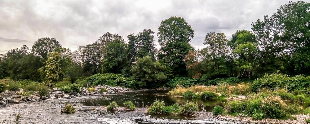 les eaux de la Moselle et ses rives d'herbes et de forêt