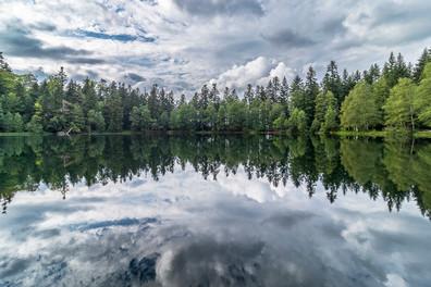 Lac de La Maix, Vexaincourt 31.07.2021  (184)-HDR.jpg