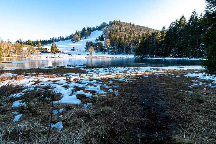 bords humides d'un lac de montagne