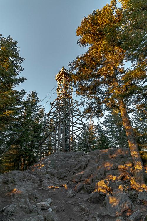 observatoire en bois construit dans la forêt
