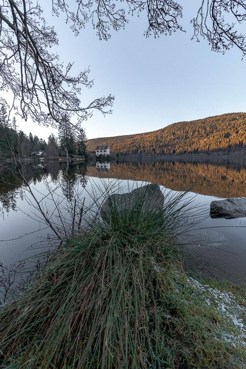 tourbes en bord de lac