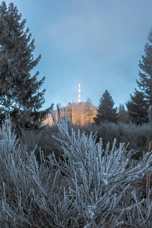 végétation gelée et pylône ou antenne hertzienne sur un sommet montagneux