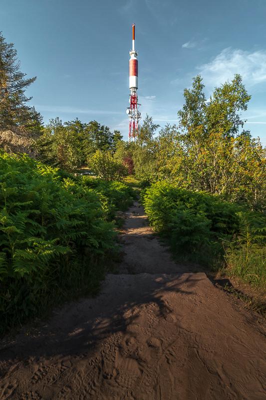 sentier qui passe dans les fougères vers une tour hertzienne