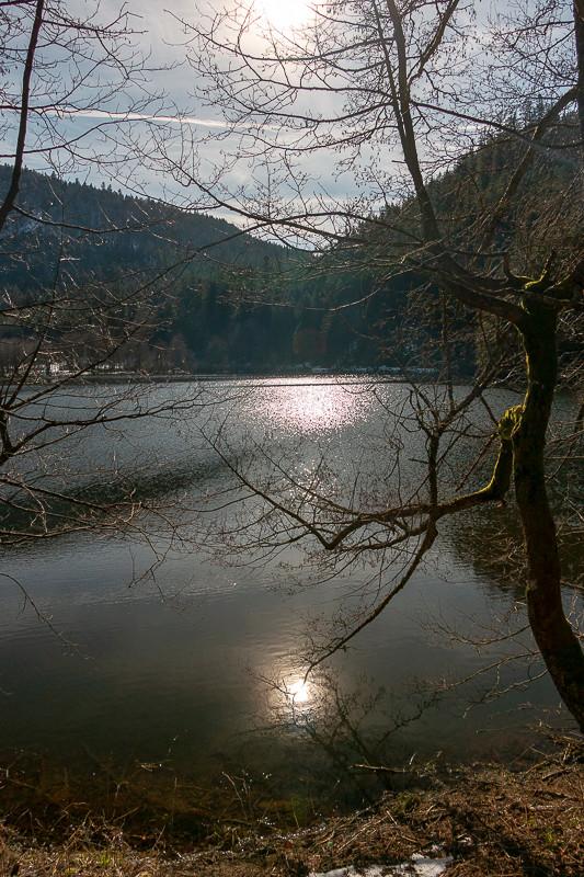 rives d'un lac à contre-jour