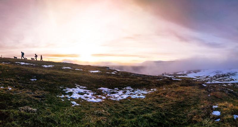 randonneurs et leurs chiens qui montent une colline devant mer de nuages