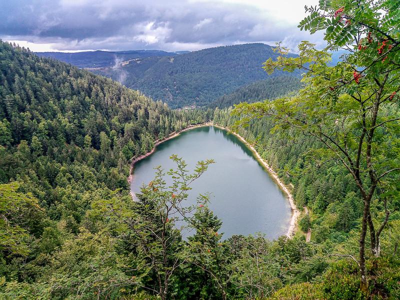 vue sur un lac de montagne et la forêt