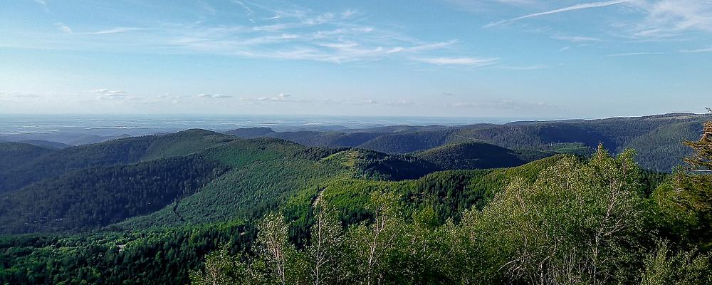 massif et forêt en milieu semi-montagneux