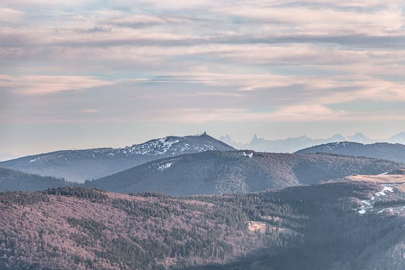 paysage montagneux et forêt