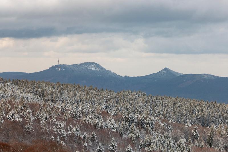 forêt et montagnes en hiver