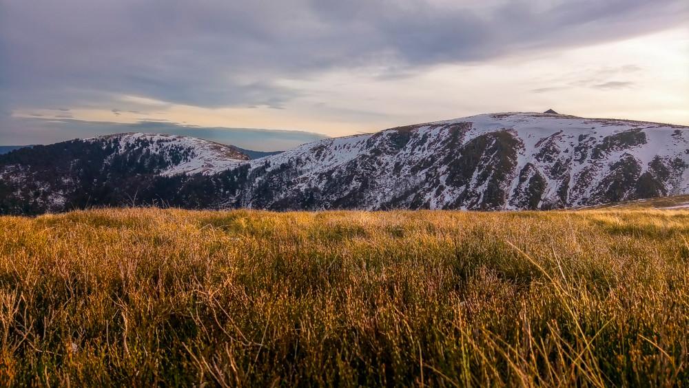 sommets semi-montagneux vus depuis une prairie de type alpage