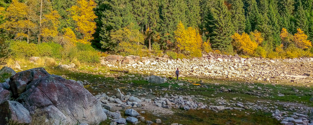 lit rocailleux du lac asséché et la forêt en second plan