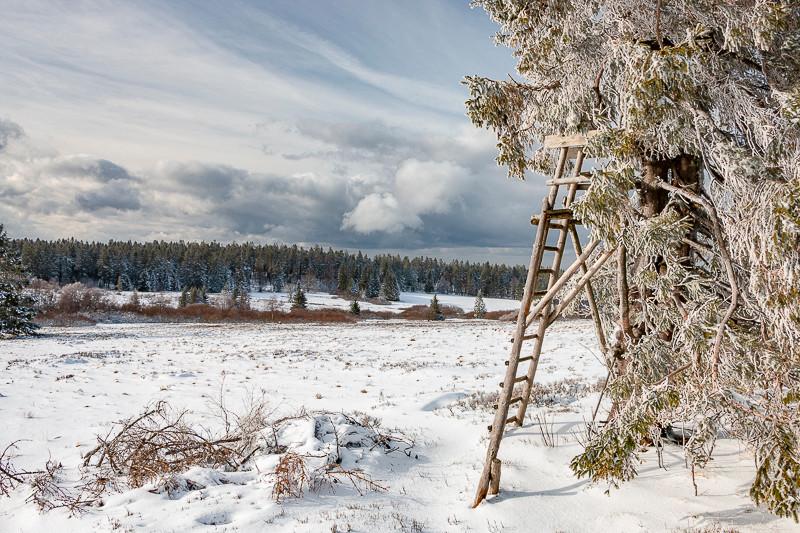 affût de chasse et paysage d'hiver