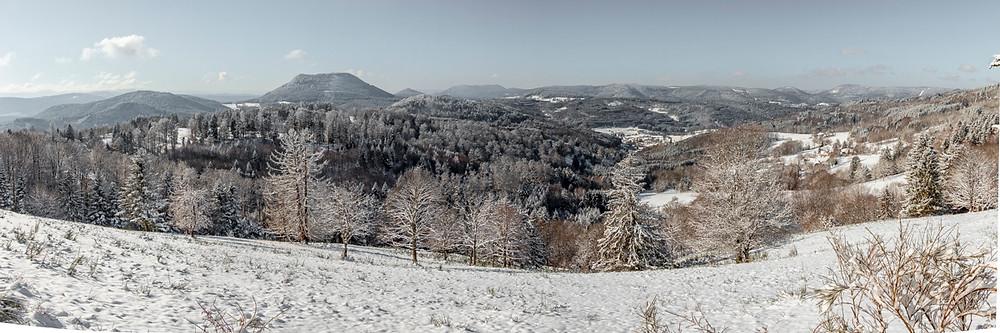 panorama de montagnes et forêts en hiver