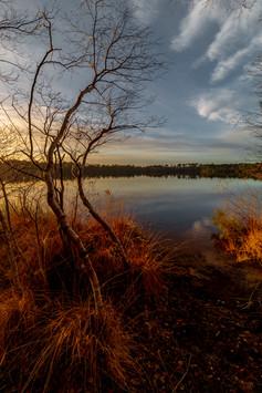 Lac du Bousquet, Gironde 20.12.2020  (33