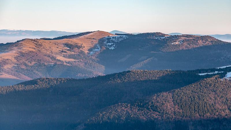 paysage de montagnes et forêts