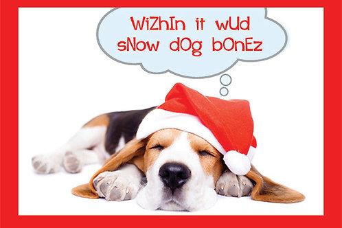 Holiday- Wizhin it wud snow dog bonez...