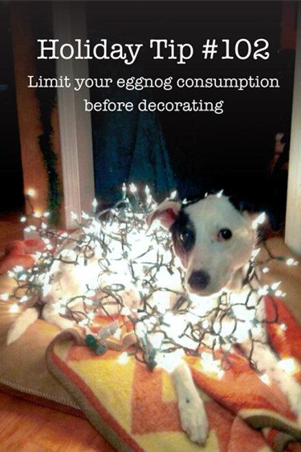 Holiday- Holiday Tip #102...