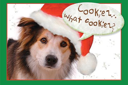 Holiday- Santa...I can explain
