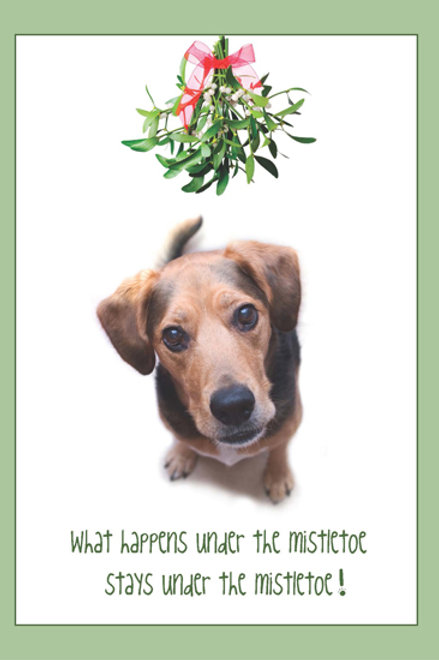 Holiday- What happens under the Mistletoe?