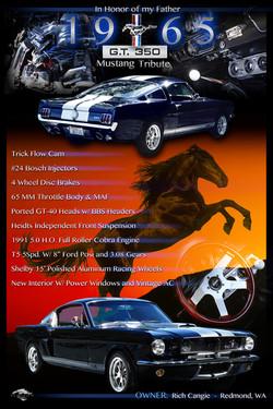 1965 Mustang Display Board