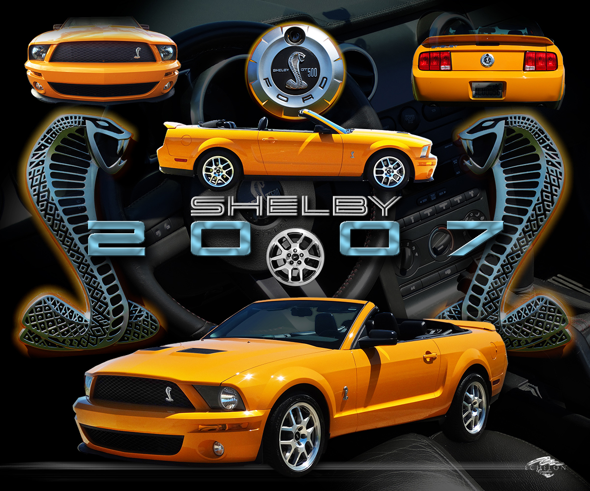 2007 shelby auto montage