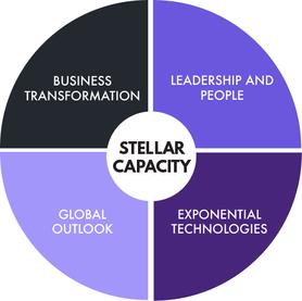 Stellar Capacity Framework.png