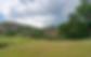 Screen Shot 2020-07-23 at 11.52.48 AM.pn