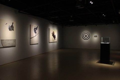 Centre d'exposition de Amos, Qc (Canada)