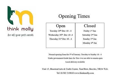 think molly openning.jpg