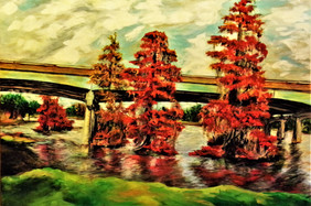 Red Cypress