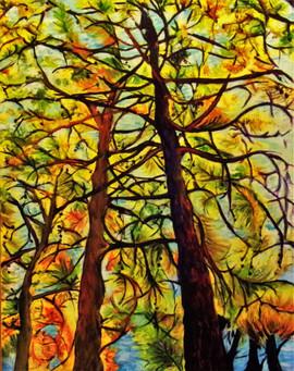 Dancing Cypress