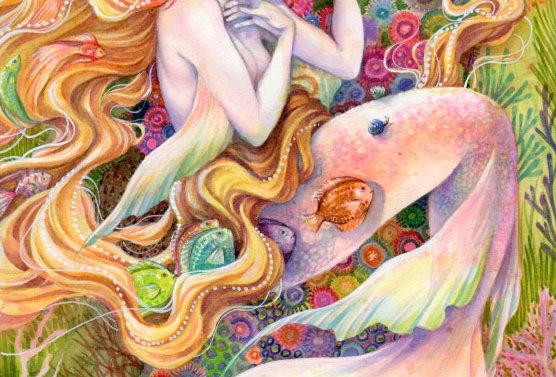 Rainbow Daydreams