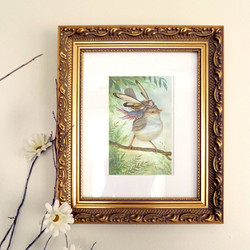 Art Prints & Canvases