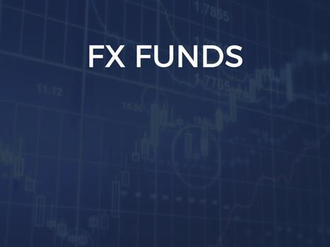 funds (2).jpg