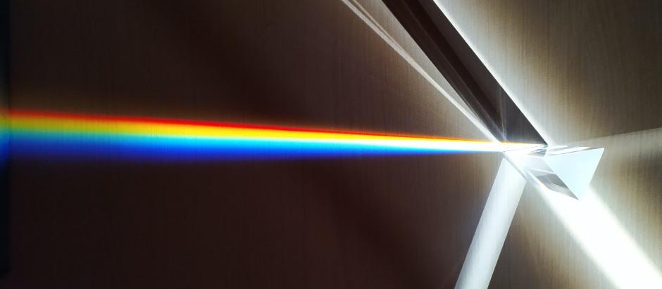 ¿Qué son los prismas gemelos y cómo modifican nuestra percepción del mundo?