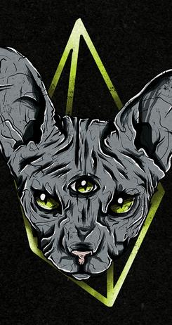 Dark Cat Sphynx