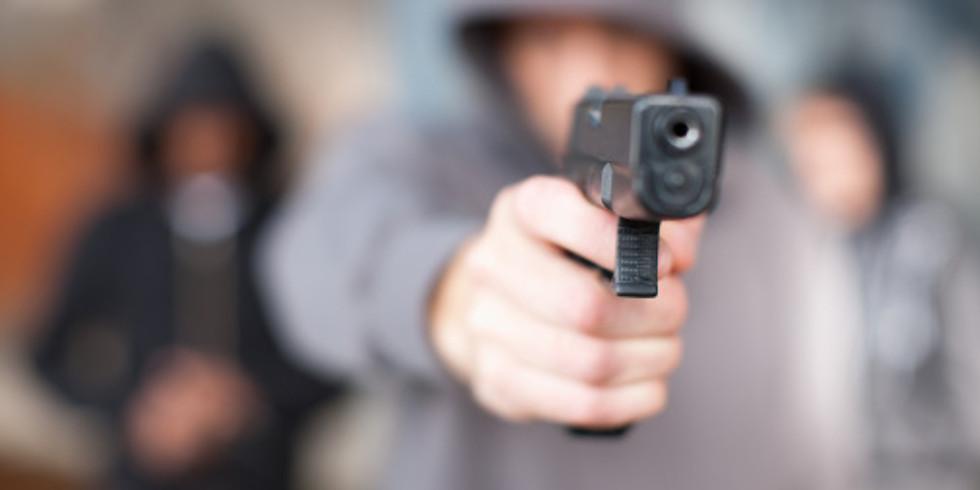 Criminal Gang Investigations