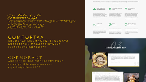case-study_cacaosource_typography_q4.png