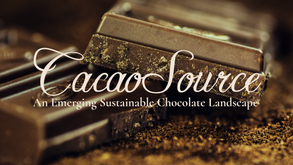 CACAO SOURCE BY KONSTANT AND NEW