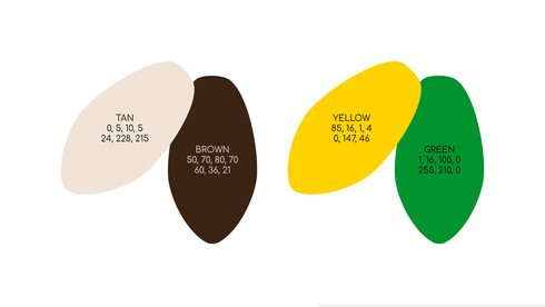case-study_cacaosource_palette_q4.png