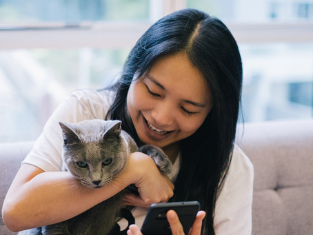 BENEFITS OF TELEMEDICINE FOR PETS