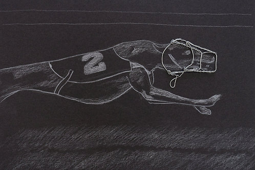 Griffics - Greyhound Champagne to win A4 print