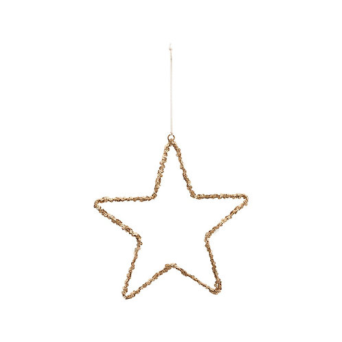 Ornament, Star, Nature