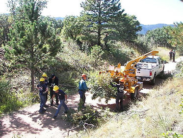 PPWPP members feed brush into a wood chipper during a mitigation project.