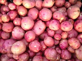 Potatoes-min.jpg