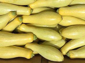 Yellow Squash-min-min.jpg