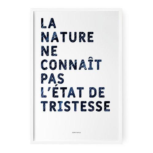 La nature - Océan