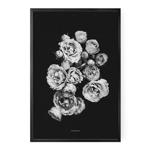 Douces Roses
