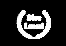 BLUE WHITE logo שקוף.png
