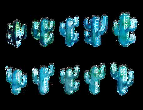 Final Pick of Cacti